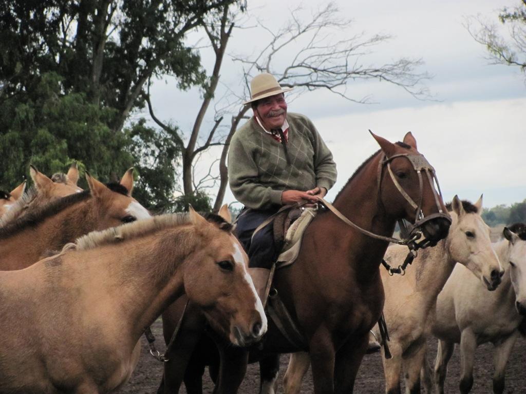 (6) Argentine : détente dans la Pampa !