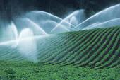 Problèmes agricoles :  Variation de la température et pluviométrie en France !