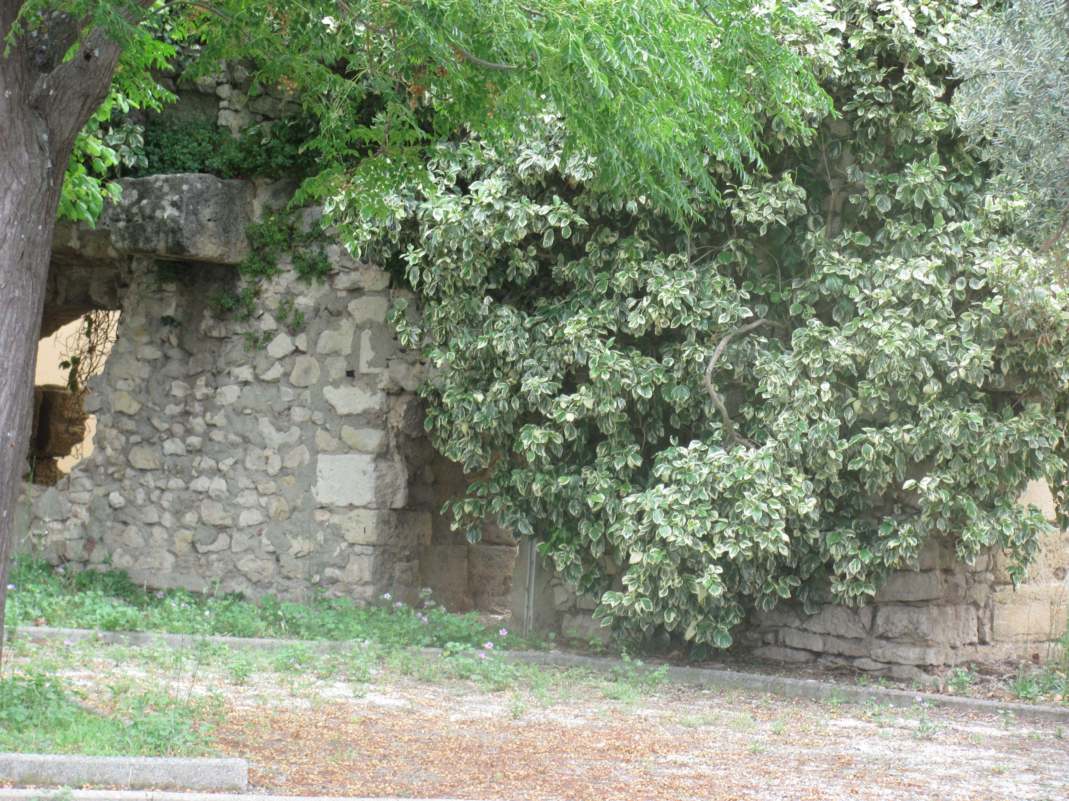 Le jeu de l'été : photo mystère ? Où se trouve ce muret dans les Bouches du Rhône ?