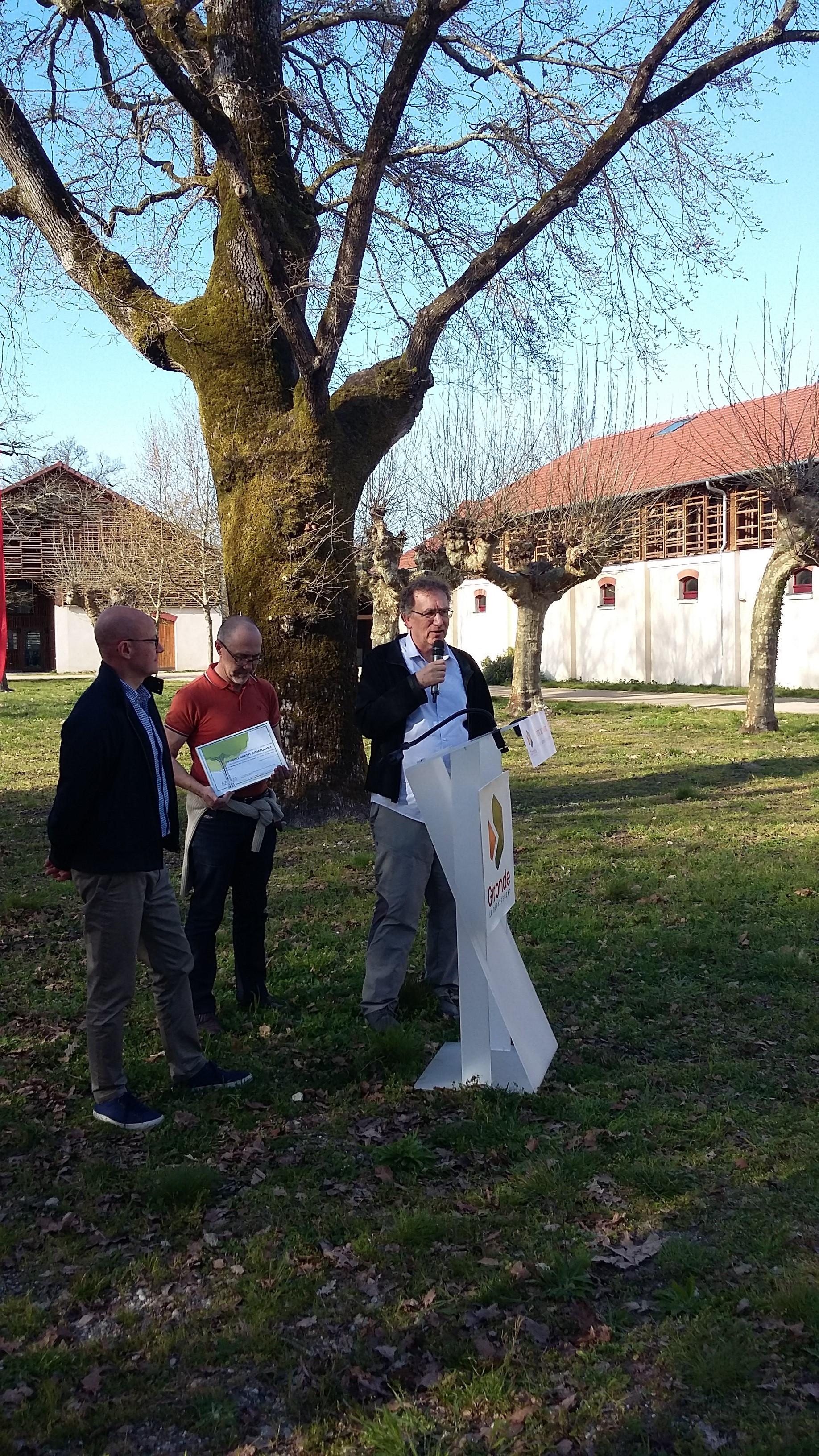 Classement d'Arbres remarquables dans les  Domaines de Certes-graveyron à Audenge