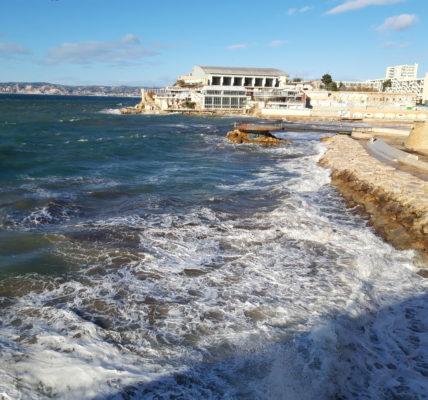 (10 ) Marseille 2020 : Affichage aux quatre vents  : Le printemps s'accroche aux murs en ce premier jour d'hiver !