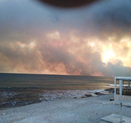 (6) 25e Université d'été du MNLE – NEVERS 2020 – Réaction de Lucien FRAU, président du MNLE13, après les incendies de cet été sur la Côte Bleue –