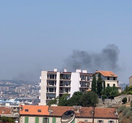 Mercredi 29 juillet / Pollution vu de Tellene : Urgence – Changement de motorisation des bateaux de croisière et de la desserte de la Corse –