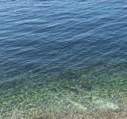(6) Déambulations Automnales 2020 : – La Mer, le refuge pour rêver et s'évader en cette période de confinement –