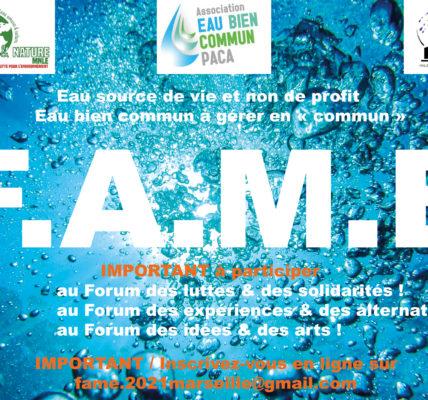 (5) QcM – Forum Alternatif Mondial de l'EAU : FAME 2021- Il y aura une réédition du fascicule «Réinventer l'eau»