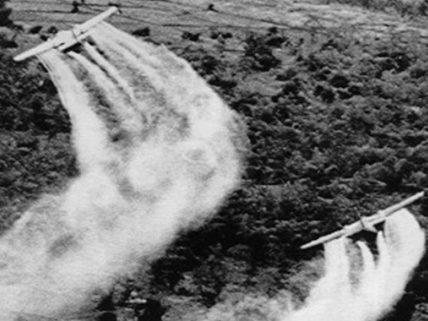 Tran To Nga porte le procès de «l'agent orange» de la guerre du Vietnam devant un tribunal français : «Elle mène le combat sur le terrain juridique contre les industriels de l'agrochimie»