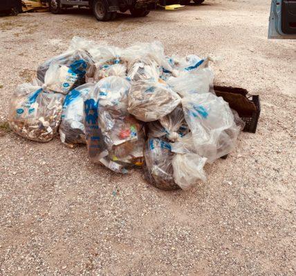 (47) #Marseille mandature 2020/2026 : L'adjoint au #Frioul avec l'Association Frioul Nouveau Regard (#AFNR) – Journée de nettoyage du littoral de l'Archipel  – Constat d'amélioration par la baisse du volume des déchets collectés –